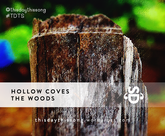 02/25/2015 @ Hollow Coves – The Woods