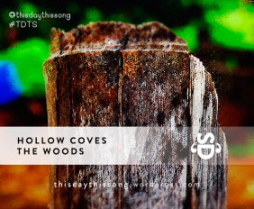 HOLLOWCOVESTHEWOOD