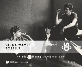 CIRCA WAVES FOSSILS